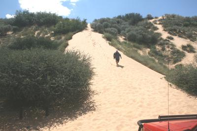 this gives an idea of the actual height of the dune.