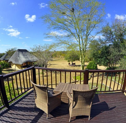 Fever tree view Kambaku lodge