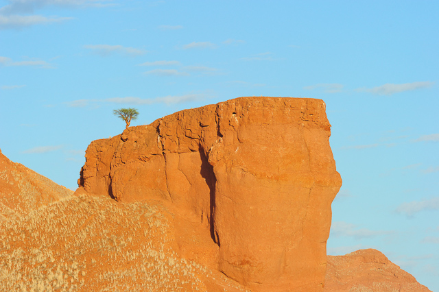 Petrified dune