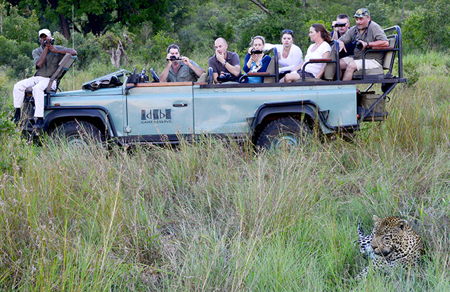 Idube Leopard sighting (note just 6 guests on the vehicle)
