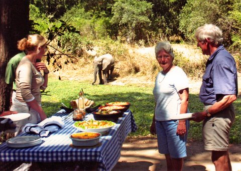elephant for lunch