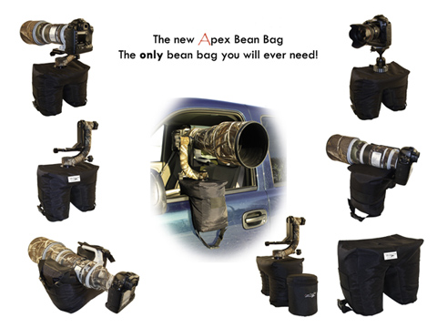 In January 2017 I Saw An Advert For The Apex Bean Bag So Ordered One And It Does Provide Best Advantages Of Both Bags Gimbal