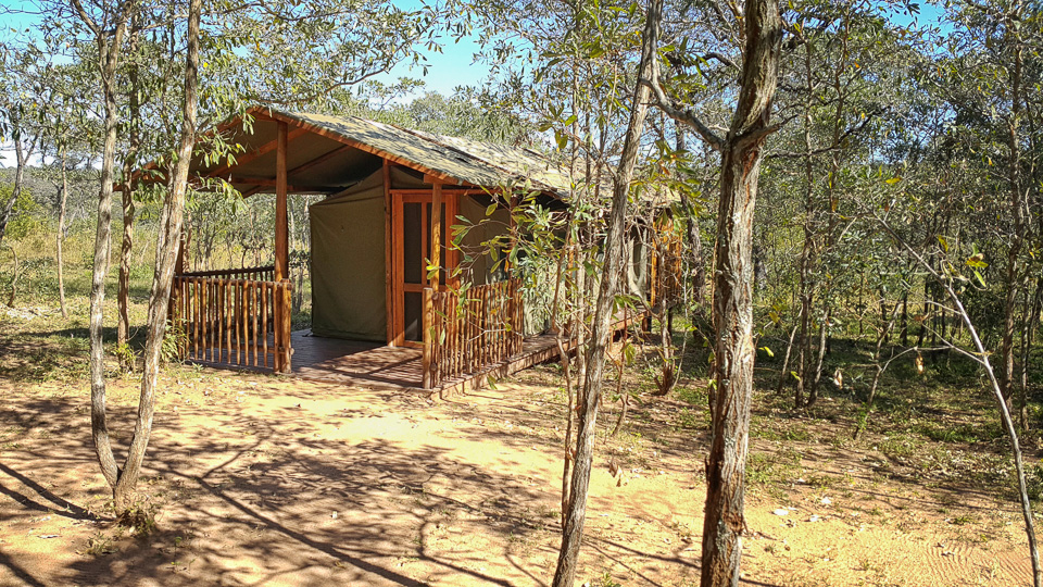 buffalo rock tented camp where you are assured of privacy and wilderness. Black Bedroom Furniture Sets. Home Design Ideas