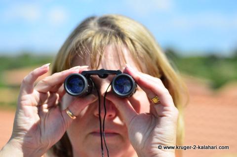 8x22 safari binoculars