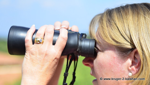 Porro prism 10x50 Nikon binoculars