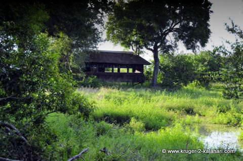 Gardenia Hide Kruger Park