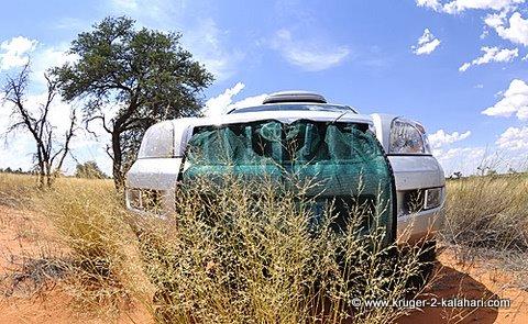 Radiator grass net protector