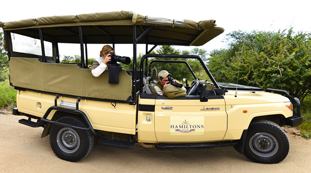 game viewing safari vehicle