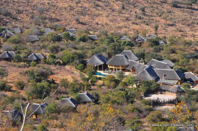 Ivory Tree Game Lodge 5 Star Luxury In The Pilanesberg