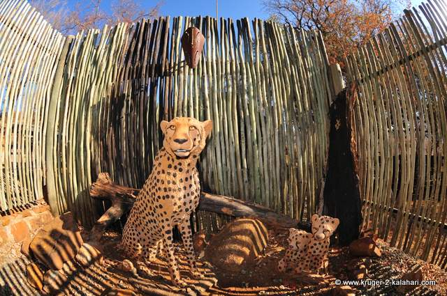 Carved wooded cheetahs at boma