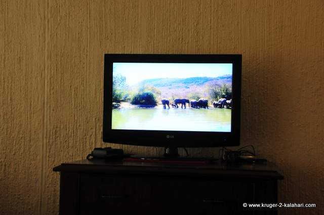 TV in room on waterhole channel