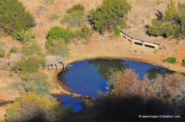 Hide waterhole