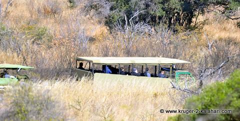 Large safari vehicle