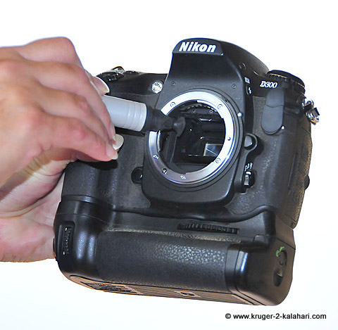 Camera Sensors How To Clean Them