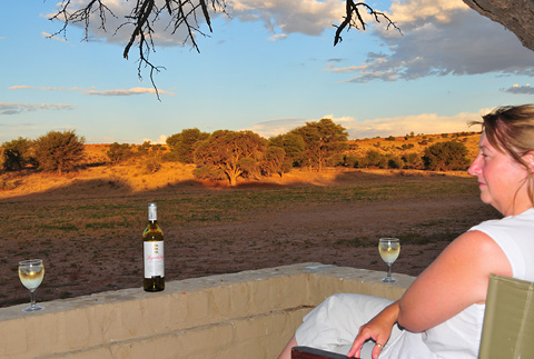 drinking leopards leap wine in the Kgalagadi