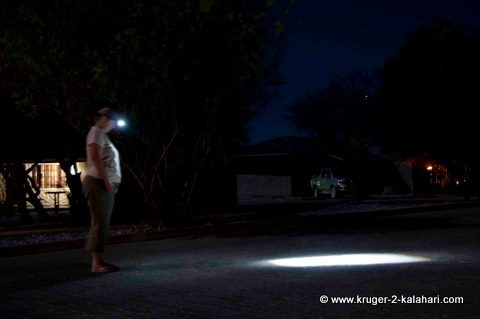 Using the Liberty 115 Lite Express headlight in Etosha