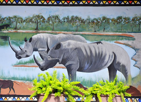 Paintings on swimming pool wall in Manyane