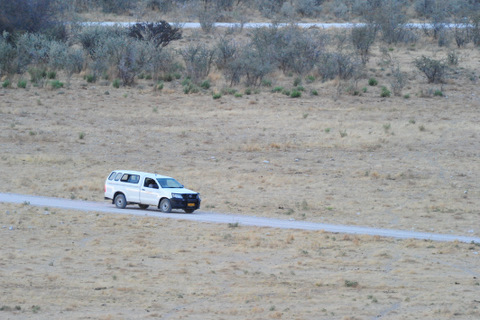 NWR vehicle driving into Dolomietpunt waterhole