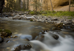 Pebble Creek, Yellowstone NP, WYO USA, with a slow shutter speed, in Fall.