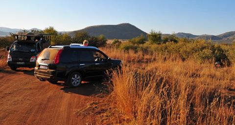 pilanesberg cowboy drivers