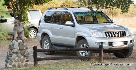 Toyota Landcruiser Prado in Lower Sabier camp
