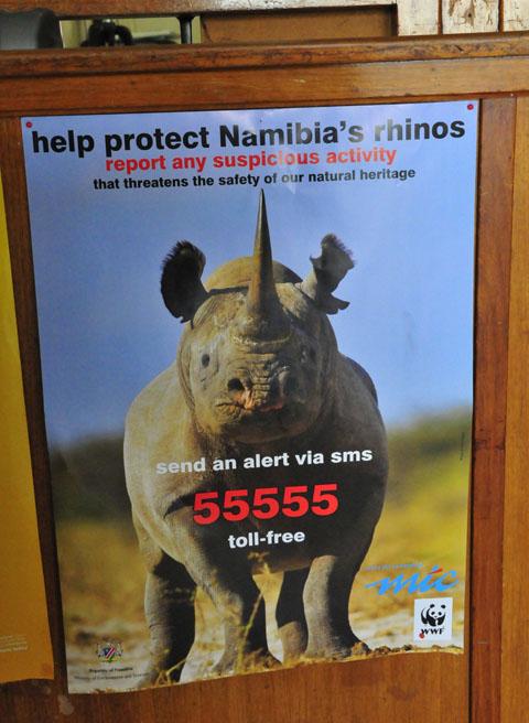 rhino poaching poster in etosha