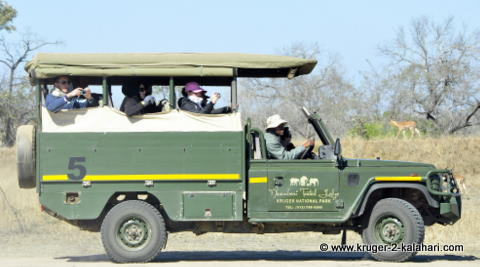Safari vehicle with full house