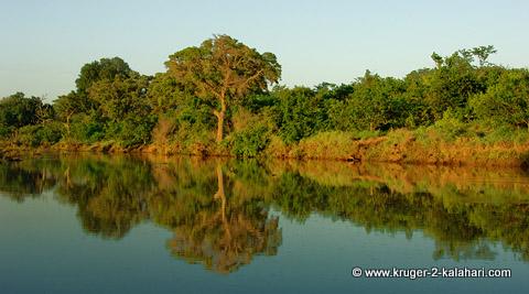 Shingwedzi River near Bateleur bushcamp