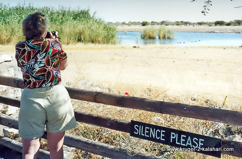 Namutoni waterhole