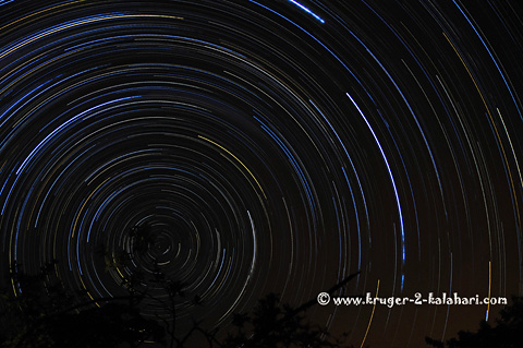 Star trail taken from Punda Maria camp