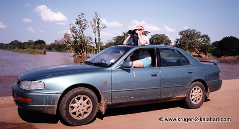 Camry on bridge in Kruger Park
