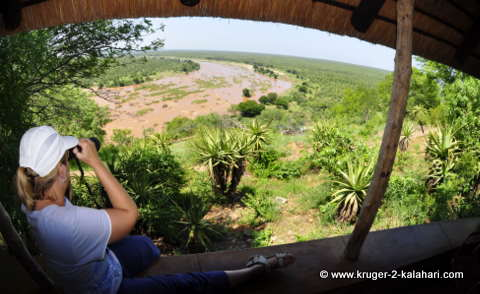 View from bungalow number 14 at Olifants camp
