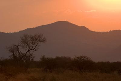 Sunset in the Pilanesberg
