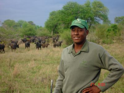 Dingaan in front of the buffalo herd