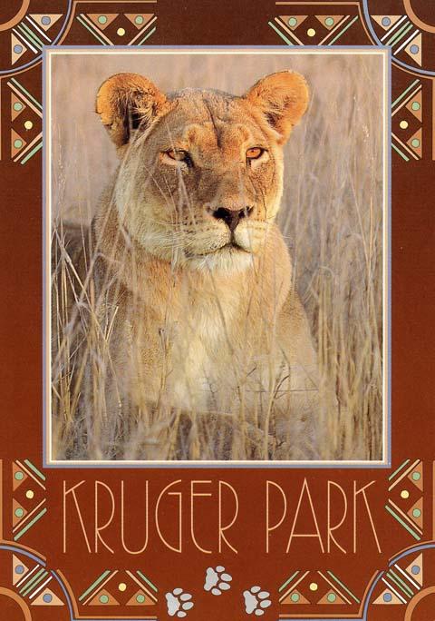Olifants camp postcard - Kruger Park