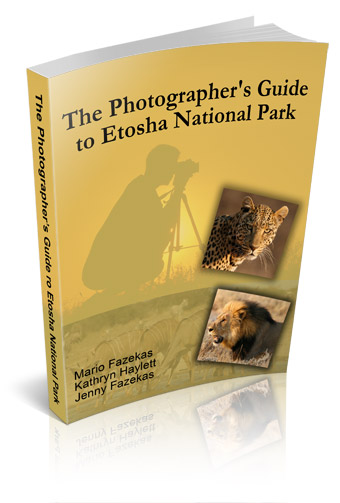 The Photographer's Guide to Etosha