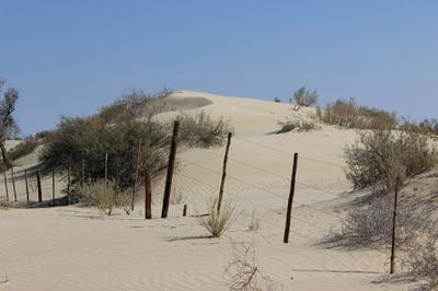The Kalahari takes back what belongs to it.