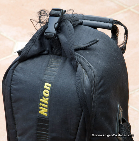 frayed Nikon 200-400 lens bag