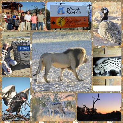 Kgalagadi 2015 collage