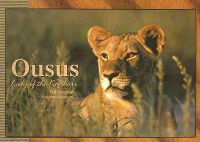 OUSUS - The Kalahari Lion