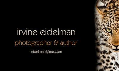 Irvine Eidelman - Calling Card