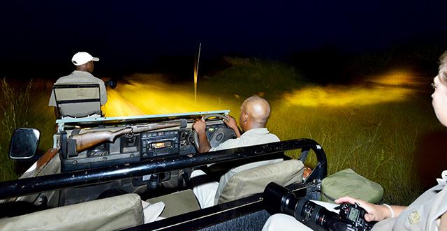 Idube night drive