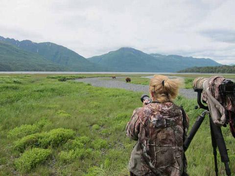 photographing wild bears