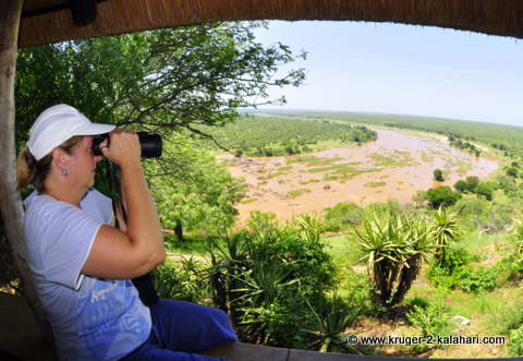 Using Nikon binoculars at Olifants camp