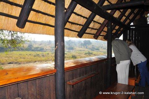 Inside Biyamiti hide