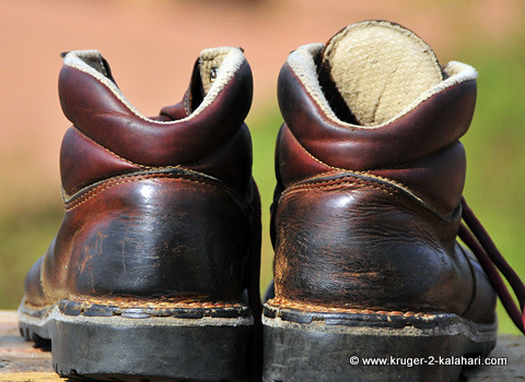 Safari footwear - Trailbuster boots