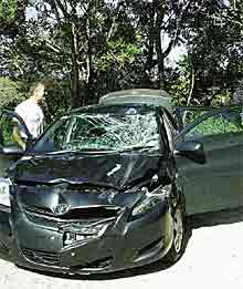 vehicle damaged by rhino