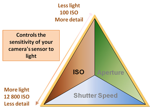 ISO part of the exposure triangle