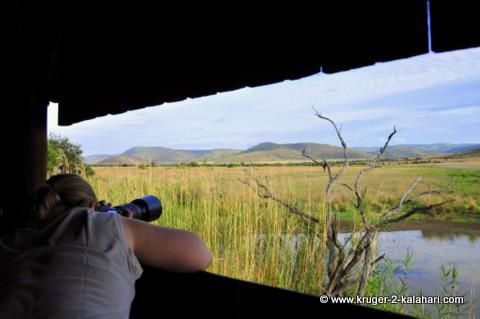 View from inside Mankwe hide, Pilanesberg