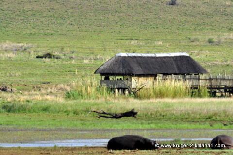 Mankwe hide, Pilanesberg